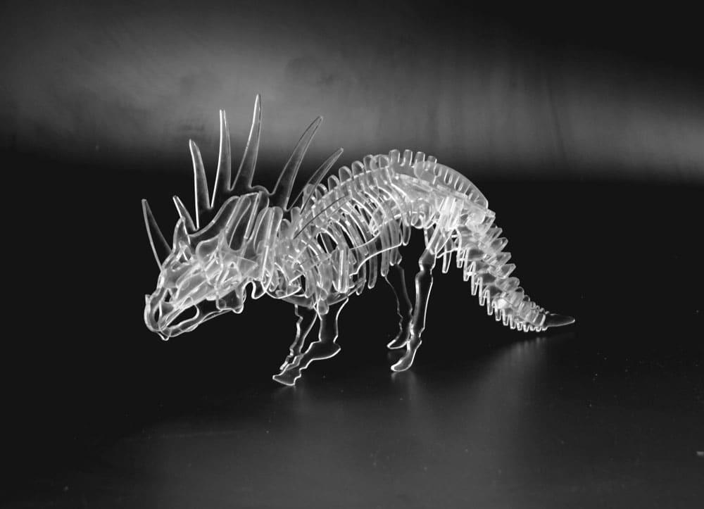 dinozaur-z-plexi